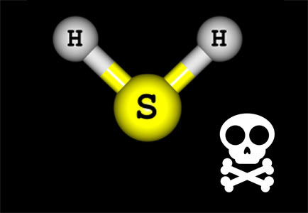 Deadly H2S gas symbol with skull and crossbones.